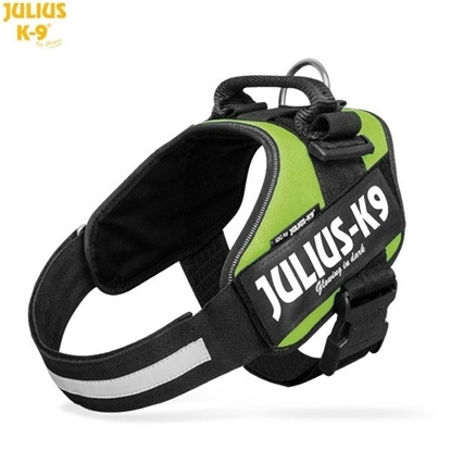 Julius-K9 IDC Powerharness Kiwi Green Size: 1