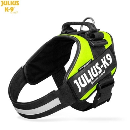 Julius-K9 IDC Powerharness Neon Size: 1