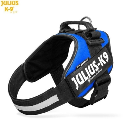 Julius-K9 IDC Powerharness Blue Size: 1