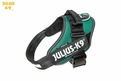 Julius-K9 IDC Powerharness Dark Green Size: 1