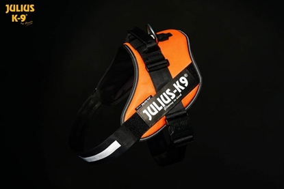 Julius-K9 IDC Powerharness Neon Orange Size: 1