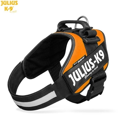 Julius-K9 IDC Powerharness Orange Size: 4