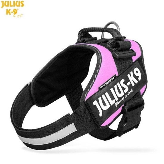 Julius-K9 IDC Powerharness Pink Size: 2