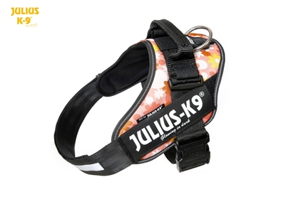 Julius-K9 IDC Powerharness Pink with Flower Size: 3