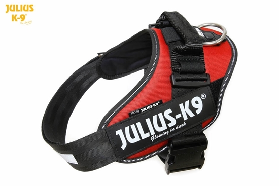 Julius-K9 IDC Powerharness Red-Brown Size: 3