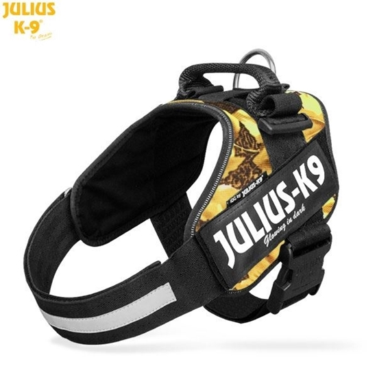 Julius-K9 IDC Powerharness Autumn Touch Size: 4