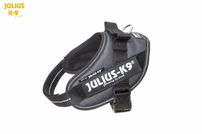 Julius-K9 IDC Powerharness Anthracite Gray Size: Mini-Mini
