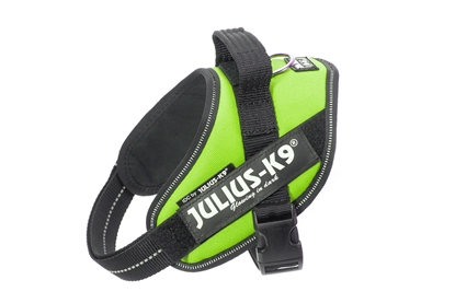 Julius-K9 IDC Powerharness Kiwi Green Size: Mini-Mini