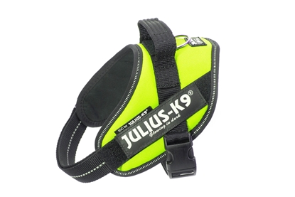 Julius-K9 IDC Powerharness Neon Size: Mini-Mini