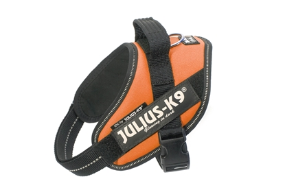 Julius-K9 IDC Powerharness Orange Size: Mini-Mini
