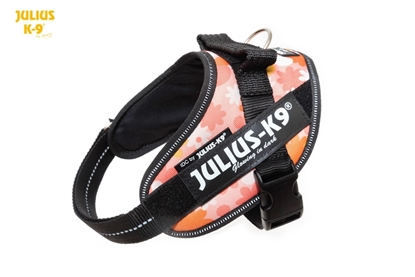 Julius-K9 IDC Powerharness Pink with Flowers Size: Mini-Mini