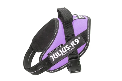 Julius-K9 IDC Powerharness Purple Size: Mini-Mini