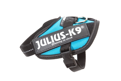 Julius-K9 IDC Powerharness Aquamarine Size: Baby1