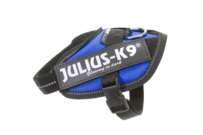 Julius-K9 IDC Powerharness Blue Size: Baby2