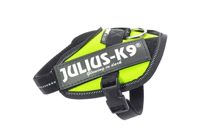 Julius-K9 IDC Powerharness Neon Size: Baby2