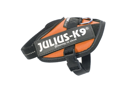 Julius-K9 IDC Powerharness Orange Size: Baby2