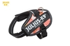 Julius-K9 IDC Powerharness Pink with Flowers Size: Baby1