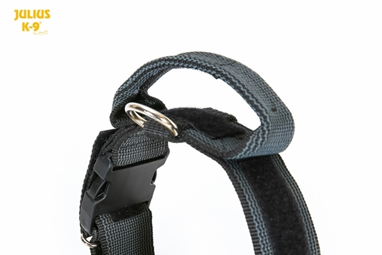 Julius-K9 Color & Gray Collar - Black, 50mm