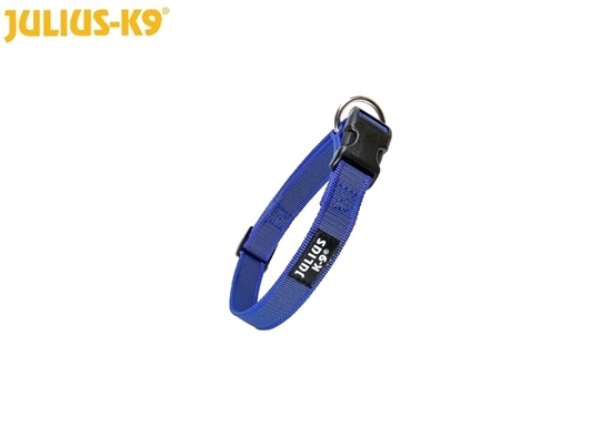 Julius-K9 Color & Gray Collar - Blue, 20mm