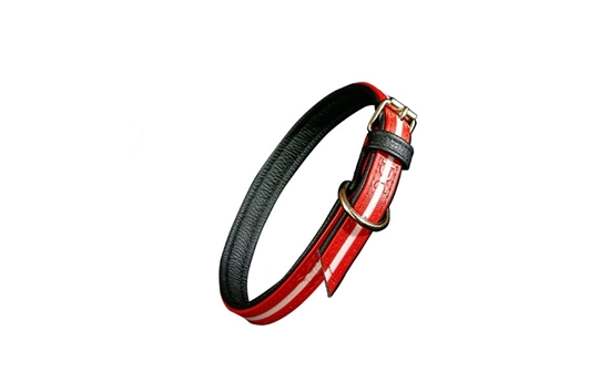 Julius-K9 IDC Lumino Collar - Red, 45cm