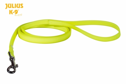 Julius-K9 IDC Lumino Leash with Handle - Neon, 1m