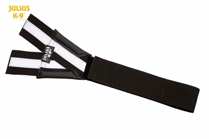 Julius-K9 Y-Belt