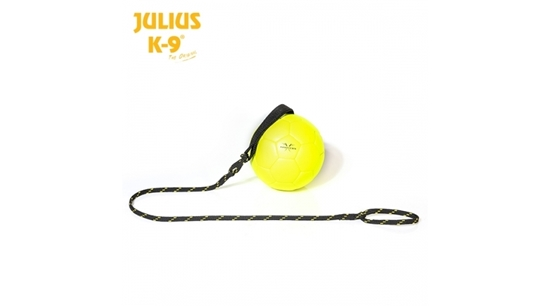 Julius-K9 labda - show training - 100 mm - citrom